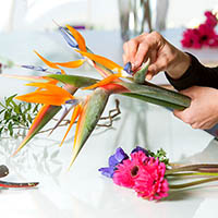 Flower Arranging
