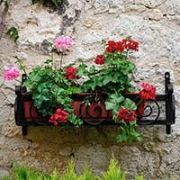 Baskets & Planters