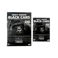 Frisk 20 x Sheets A4 & 20 x Sheets A3 Heavy Black Card Pads - 350-076245