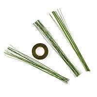 Katy Sue Green Flower Wires Kit - 40 x 20 Gauge, 100 x 28 Gauge &-087536