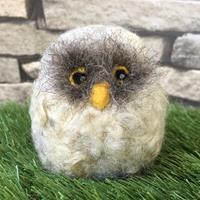 Knit2Felt Owl Needle Felting Kit-409123