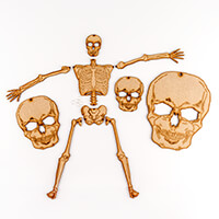 Daisy's MDF Skeleton with 6 Jump Rings and 3 x MDF Skull Faces-606984