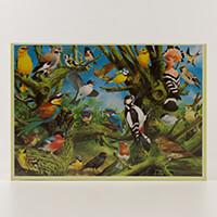 European Birds 1000 piece 48 x 69 cm-619359