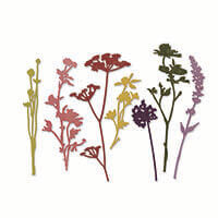 Sizzix® Thinlits™ Set of 7 Dies - Wildflowers by Tim Holtz-707692