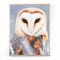 Pixelhobby UK Owl Kit-754736