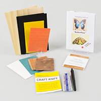 Butterfly Marquetry Kit Includes Veneers, Design Sheet, Practice -845500