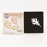 Sizzix Bigz Set of 3 Dies - Tattered Leaves by Tim Holtz-875102