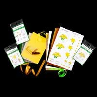 Easycraftideas Daffodil Stamping Kit - Inc. 22 x Stamps, 8 x Card-922642